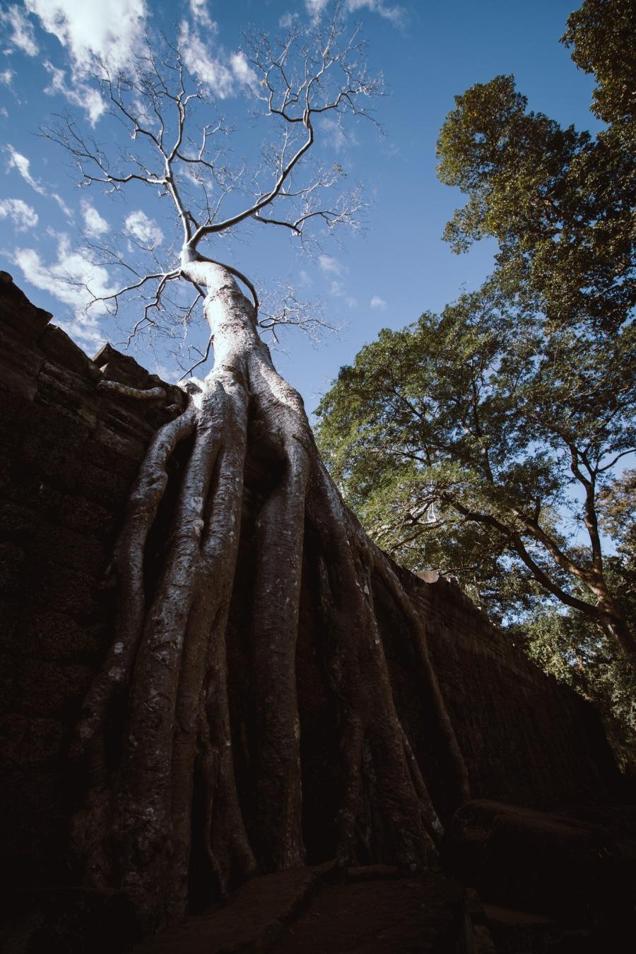 Angkor-26-3.jpg